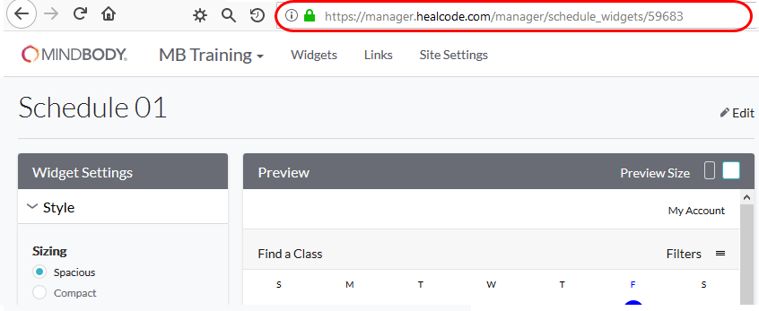 Putting widgets in an iFrame - branded web tools